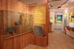 GEOMuseo Redagno, conifere fossili Foto Christian Weber