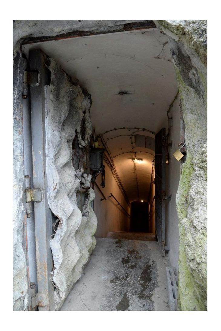 Entrata del bunker