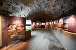 Bunker Mooseum - Il percorso espositivo nella galleria