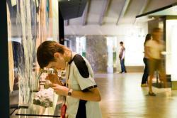 Museum Ladin