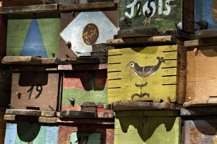 Museo dell'apicoltura Maso Plattner, arnie Foto L Thalheimer